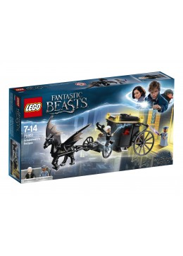copy-of-lego-harry-potter-partita-di-quiddich-75956-15.jpg