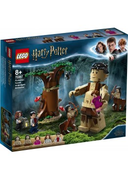 LEGO Harry Potter La foresta proibita  l'incontro con la Umbridge - 75967